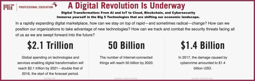 MIT Organizational Design for Digital Transformation