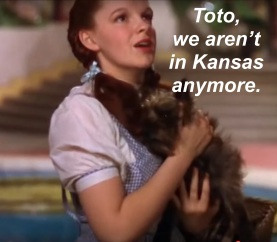Arriving in a time of continuous transformation and navigating according to old paradigms is like trying to find your way through Oz using a map of Kansas.
